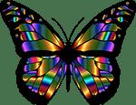 πεταλούδα και ψυχή